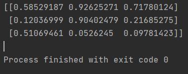 numpy random array